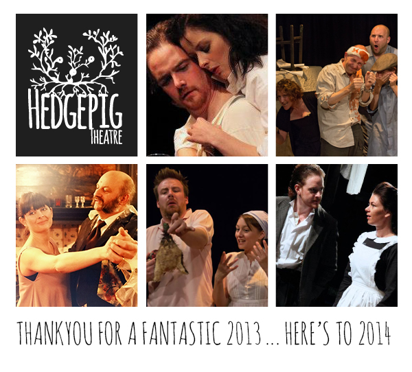 2013 – What a year for Hedgepigs!